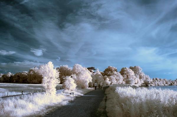 stunning beautiful unique infra