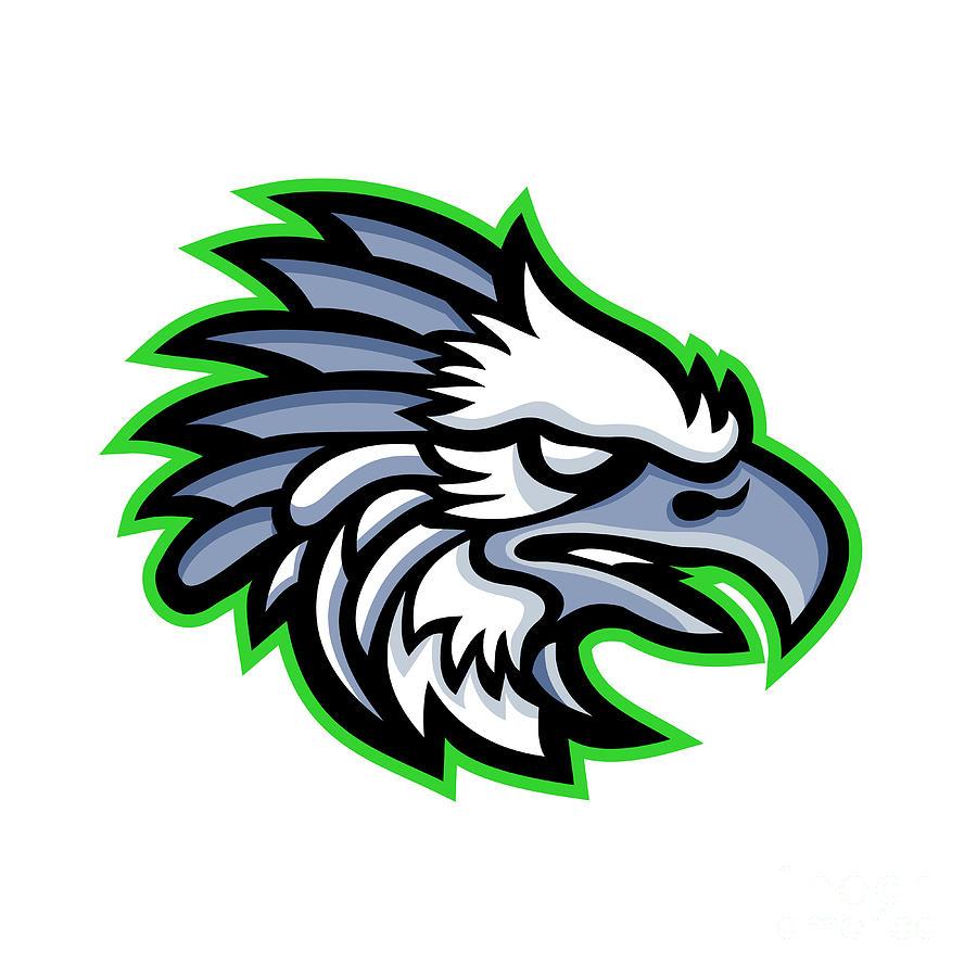 medium resolution of american harpy eagle mascot