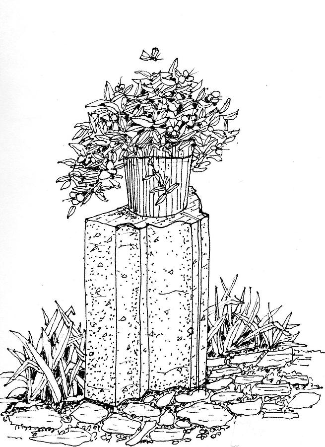 An Outdoor Pot Drawing by James Lewis Hamilton