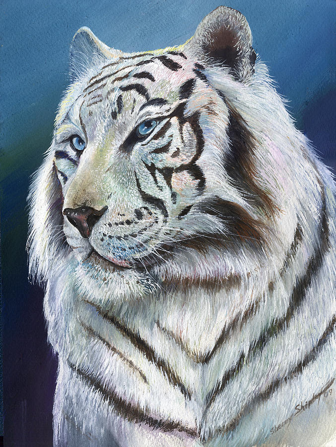 Angel The White Tiger Painting by Sherry Shipley
