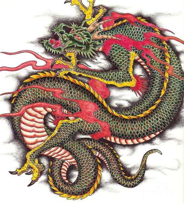 Asian Dragon Drawings