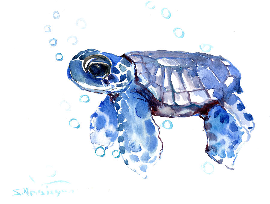 Arctic Fox Wallpaper Cute Aesthetic Baby Blue Sea Turtle Painting By Suren Nersisyan