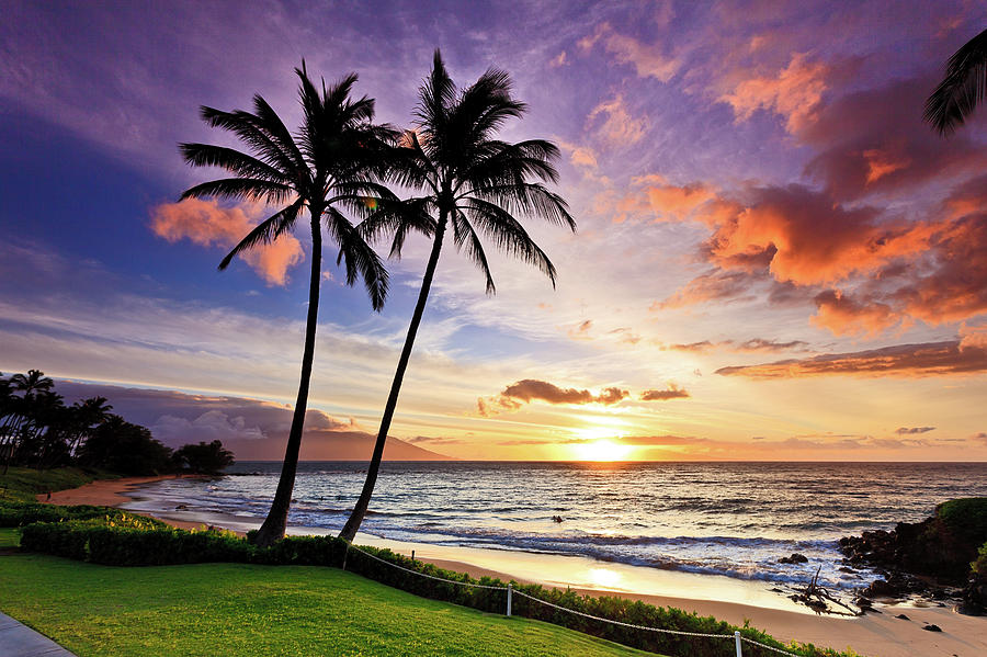 Beach Sunset With Palm Trees In Maui, Hawaii Photograph By