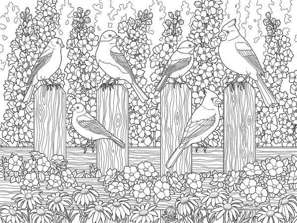 garden coloring page # 22
