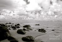 Black And White Beach Scene Photograph by Kicka Witte