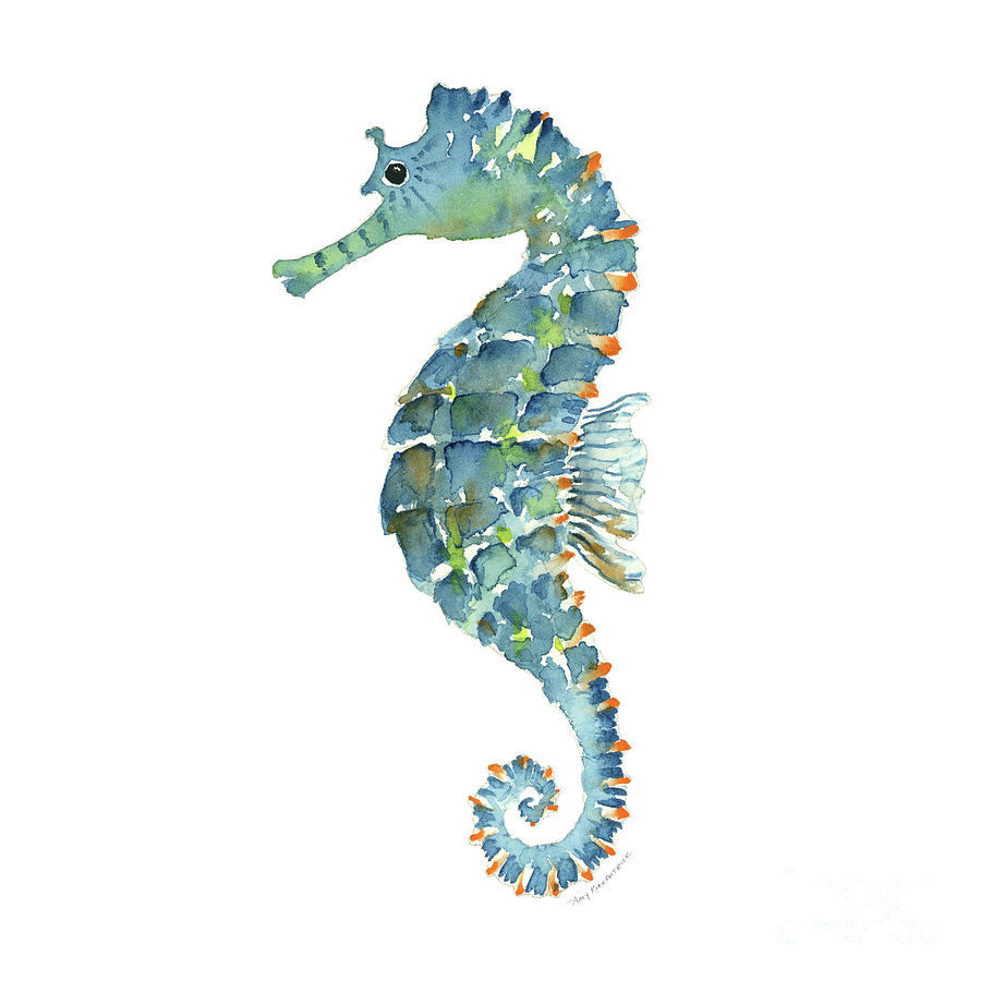 blue seahorse by amy