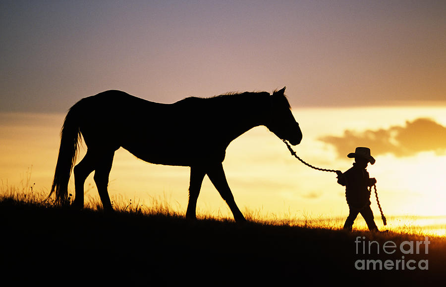 Girl Tshirts Hd Wallpaper Boy And Horse Photograph By Ron Dahlquist Printscapes