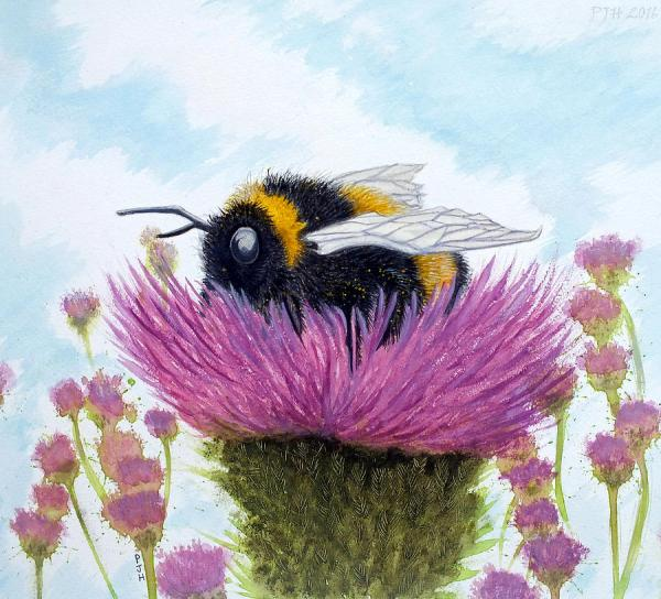 Bumble Thistle Painting Philip Harvey