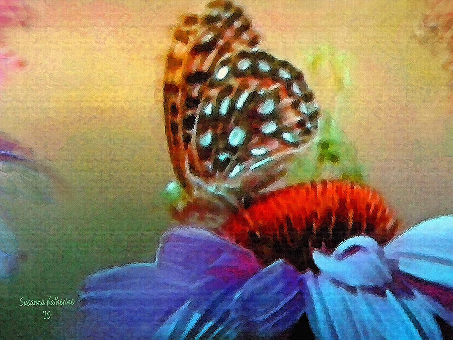 Butterfly On A Flower Painting By Susanna Katherine