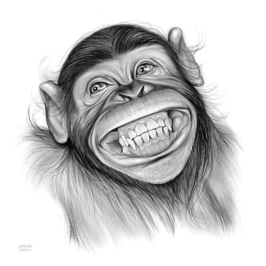 chimpanzee by greg joens
