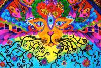 Cool Kitty Cat Painting by Marina Hackett