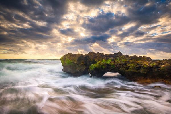 coral cove jupiter florida seascape