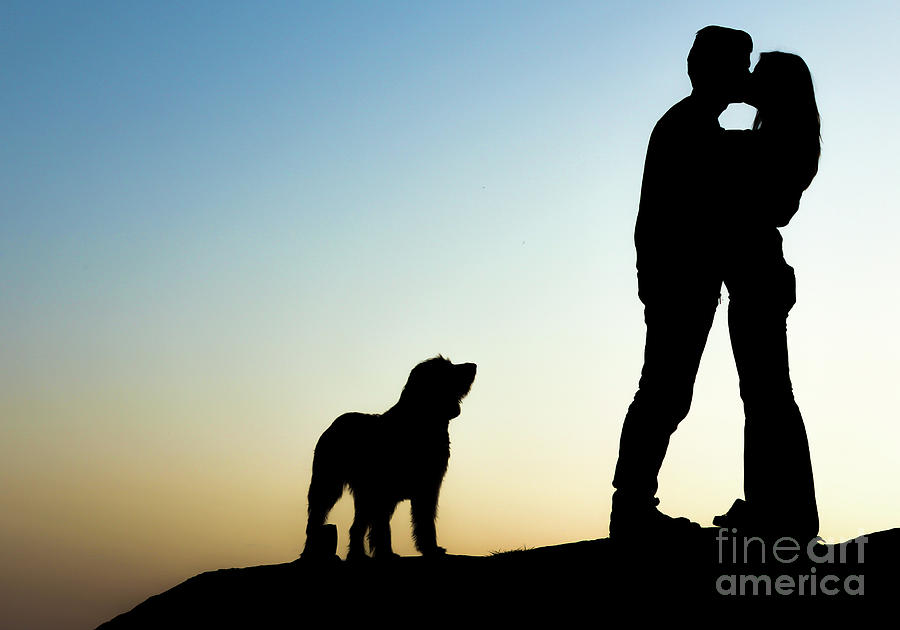 Download Couple In Love Silhouette With Dog Photograph by Alexandre ...