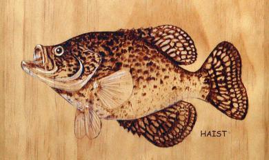 Wood Burning Bass Patterns | Wooden Thing