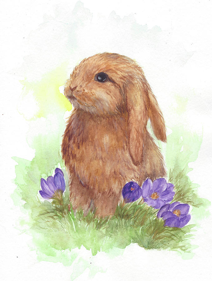 cute rabbit by mila