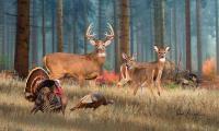 Deer Artwork - The Gathering Painting by Dale Kunkel Deer Art