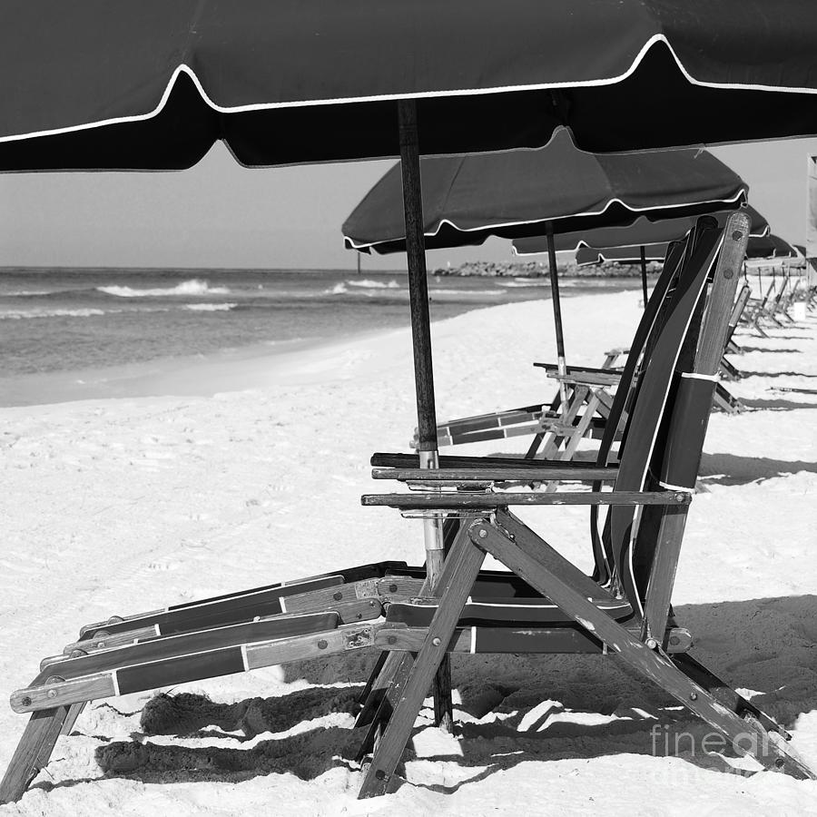 Beach Chairs With Umbrella Destin Florida Beach Chairs And Umbrellas Square Format Black And White By Shawn O Brien