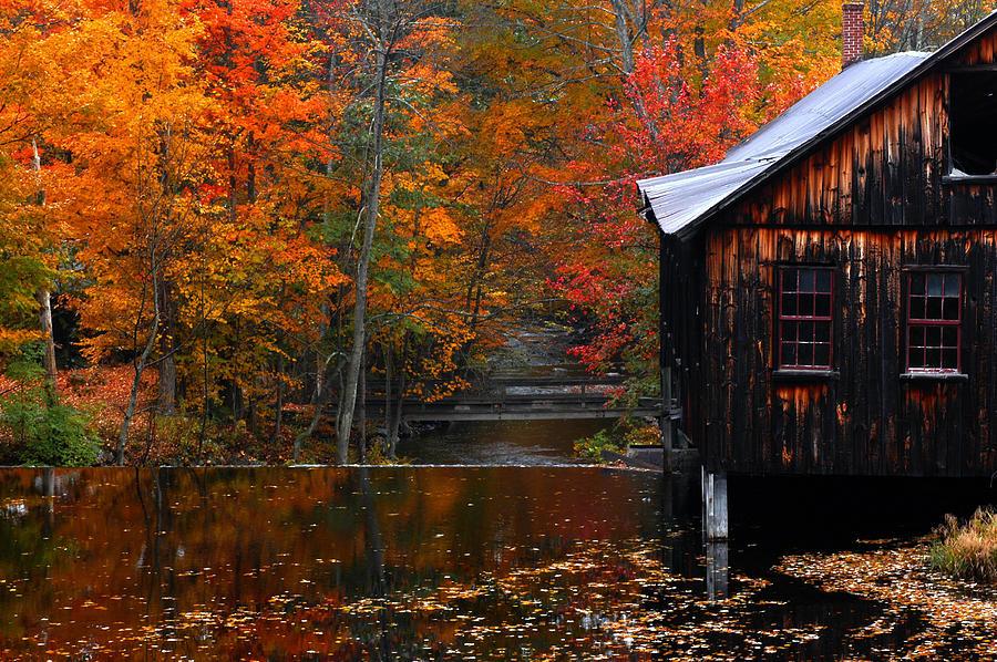 Fall Pumpkin Iphone Wallpaper Fall Barn And River N Leverett Ma Photograph By Richard Danek