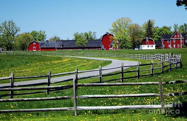 farm landscape kathleen