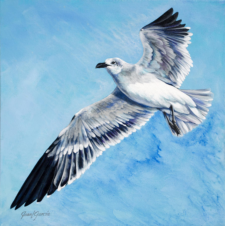 Flying Gull Painting By Joan Garcia
