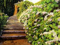 Garden Stairway Tuscany Painting by David Lloyd Glover