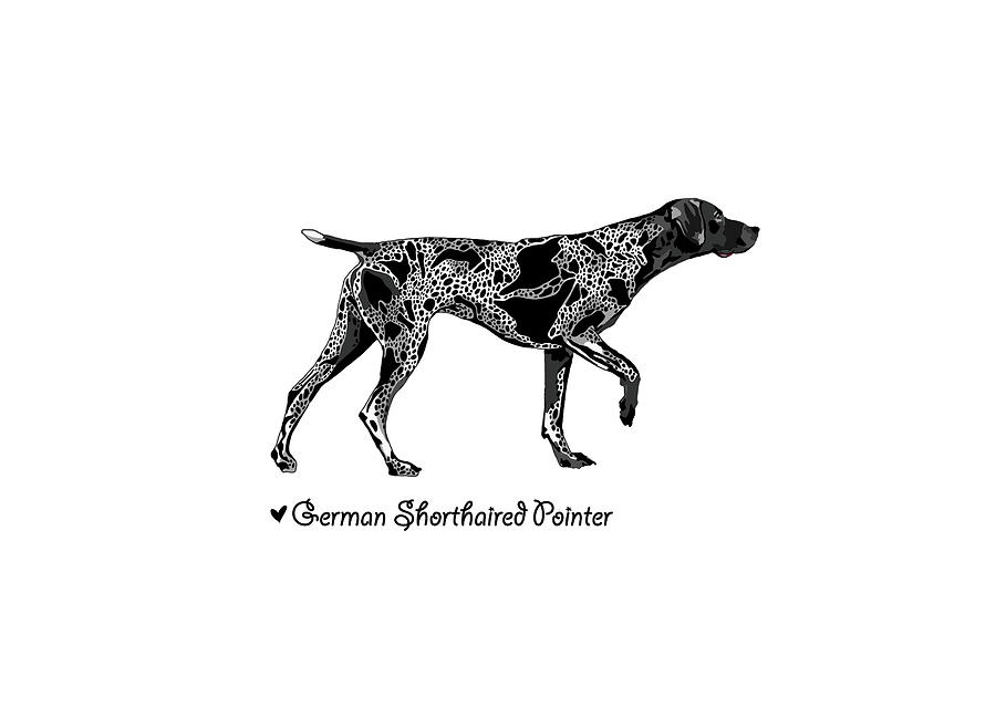 German Shorthaired Pointer Illustration Drawing by Art By