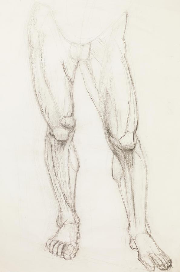 Human Legs Drawing : human, drawing, Human, Legs,, Anatomy, Study, Drawing, Comaniciu