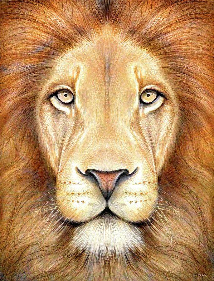 Lion Drawing Color : drawing, color, Color, Drawing, Joens