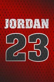 michael jordan chicago bulls retro