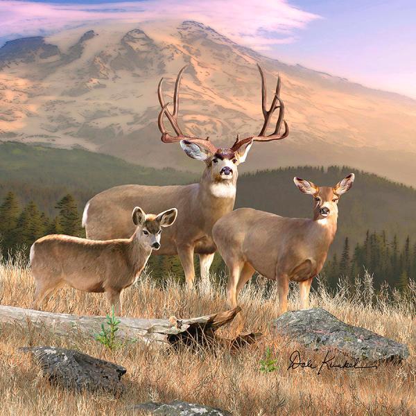 Mule Deer Painting Wildlife