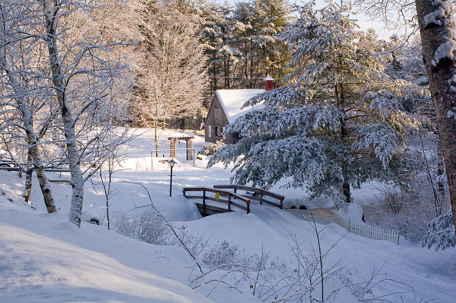 Falling Snow Wallpaper Animated Iphone New England House And Forest In The Snow Photograph By