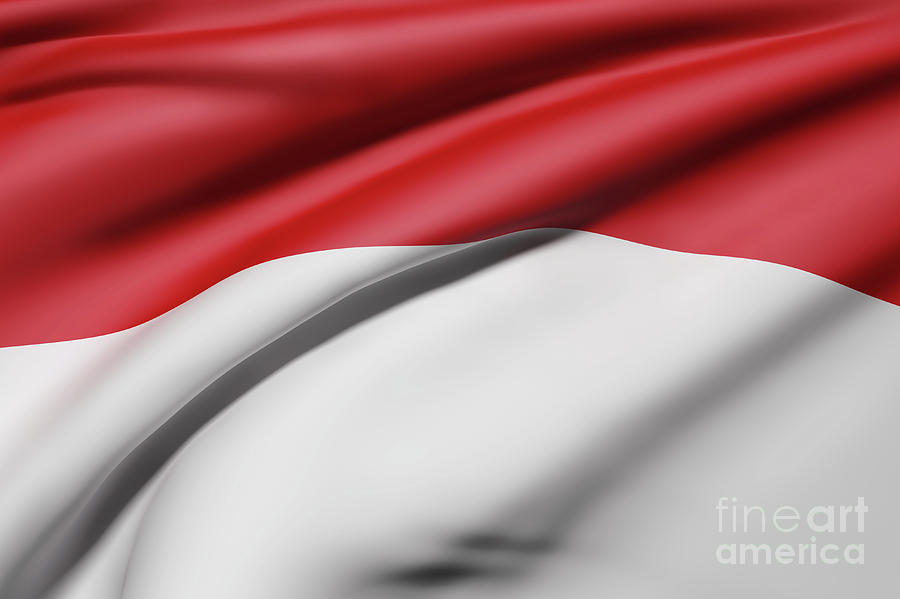 republic of indonesia flag