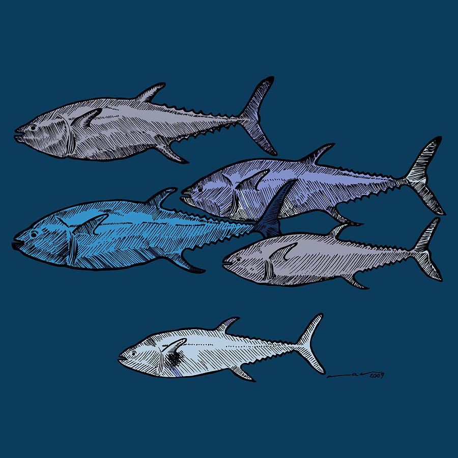 medium resolution of drawing drawing school of tuna fish full color by karl addison