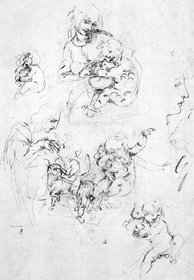 Studies For A Madonna With A Cat Drawing by Leonardo da Vinci