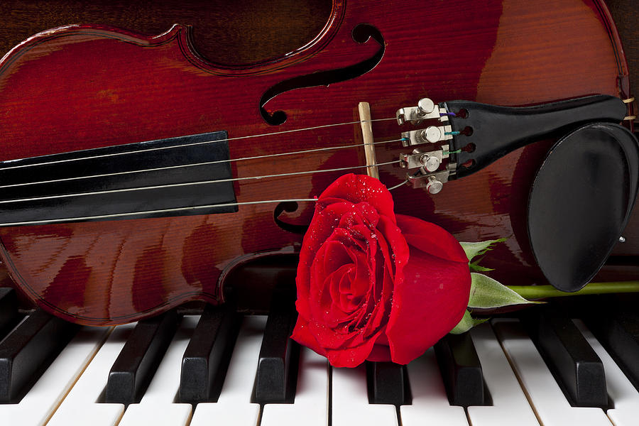 https://i0.wp.com/images.fineartamerica.com/images/artworkimages/mediumlarge/1/violin-and-rose-on-piano-garry-gay.jpg