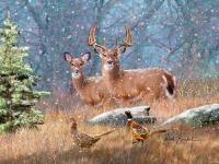 Whitetail Deer Artwork - First Snow Painting by Dale ...