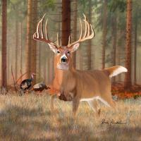 Whitetail Deer Artwork - The King Of Bucks Painting by ...