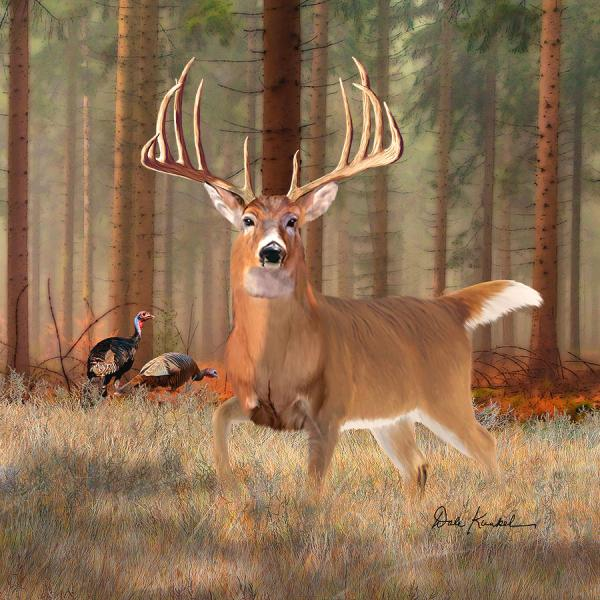 Whitetail Deer Buck Paintings