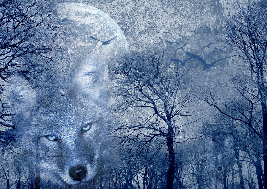 Wolf Digital Art by Svetlana Sewell