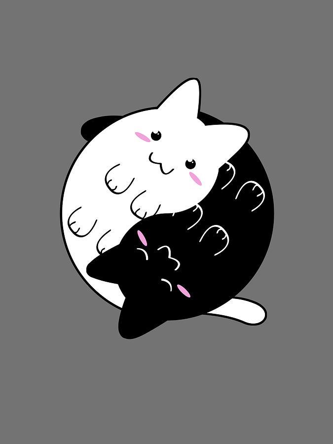 yin yang cat by