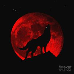 Blood Red Wolf Supermoon Eclipse 873m Photograph by