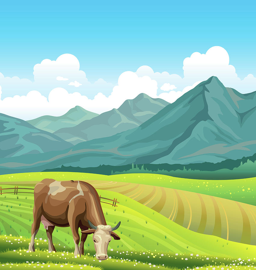 cartoon cow and rural