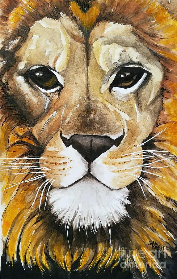 fierce lion too close