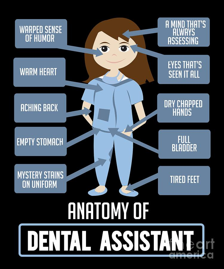 Funny Dentist Pics : funny, dentist, Funny, Dentist, Quote, Anatomy, Dental, Assistant, Digital, TeeQueen2603