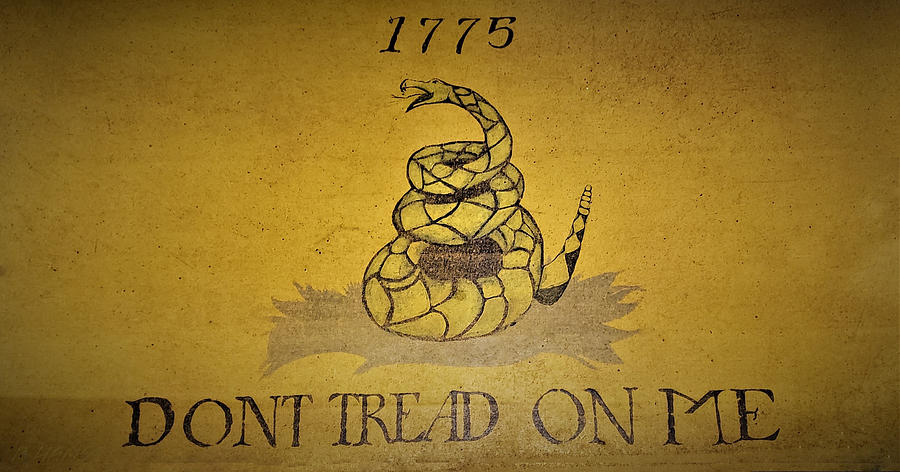 the gadsden flag by