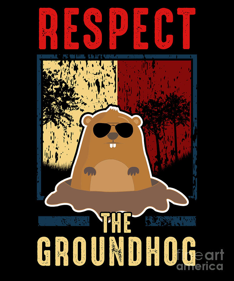 Funny Groundhog Pictures : funny, groundhog, pictures, Respect, Groundhog, Funny, Digital, Perfect, Presents