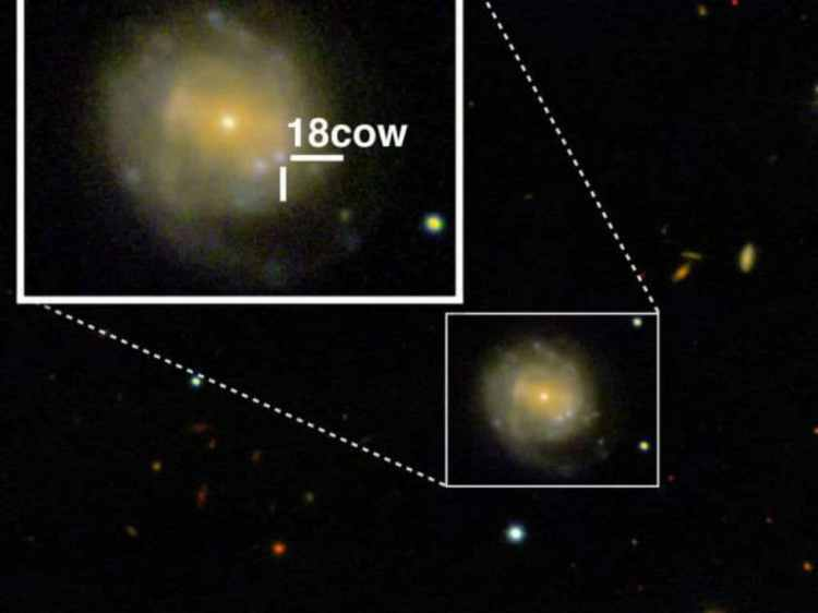 A mysterious cosmic flare, 'the cow' might just be the birth of a   cosmic flare cow