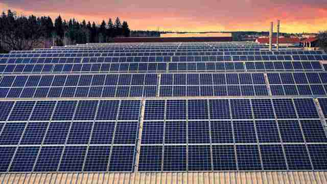 Wind, solar panels will soon become top source of electricity; surpasses natural gas, coal: IEA report