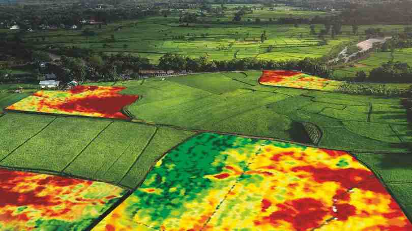 Precision agriculture could boost India's food production capacity, encourage sustainable farming- Technology News, Gadgetclock