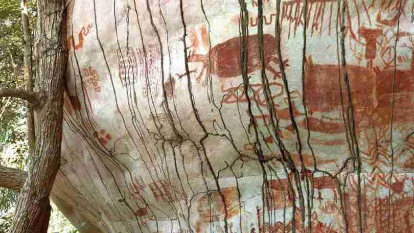 Rock art gives proof earliest inhabitants of rainforest lives alongside Ice Age animals